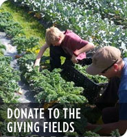 Donate To The Giving Fields