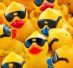 The 21st Annual Rubber Duck Regatta presented by Dawn will take place on Sunday, September 6 at 3pm prior to the Western & Southern/WEBN Fireworks presented by Cincinnati Bell.
