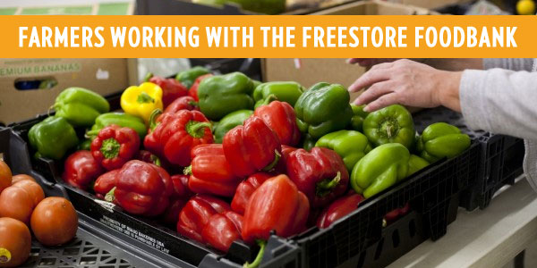 Interested in donating fresh fruits and vegetables? We would greatly appreciate the opportunity to speak with you. Simply fill out the contact form below so that we can get in touch with you. Together, we can keep our communities healthy and strong.