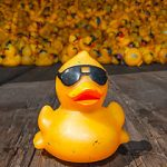 Duck Central Volunteers: Take Duck Sales Calls
