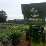 Giving Fields